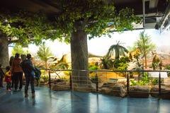 Pekín el museo de la historia natural, sala de exposiciones interior de Asia, China, Imagen de archivo