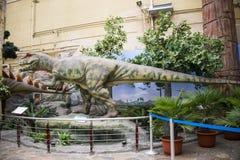 Pekín el museo de la historia natural, sala de exposiciones interior de Asia, China, Foto de archivo libre de regalías
