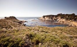 Peka Lobos, Carmel, Kalifornien arkivbilder