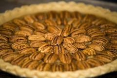Pekannuss-Torte Lizenzfreies Stockfoto