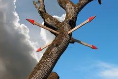 Pekare till trädet Arkivbilder