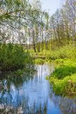 Pekhorka river in the reserve `Moose island`. Moscow region. Russian Federation. Spring 2018 Royalty Free Stock Photo