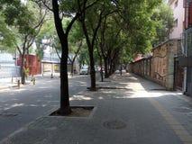 Pekin, Chiny, mgiełka, w lecie ulicy Obrazy Stock