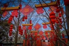 PEKIN, CHINY - 29 STYCZEŃ, 2017: Turyści i miejscowi zbierają w olimpijskiej świątyni ziemia park, drzewa dekorujący wewnątrz Obrazy Royalty Free