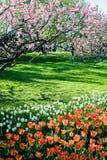 Pekin ogród botaniczny Zdjęcia Royalty Free