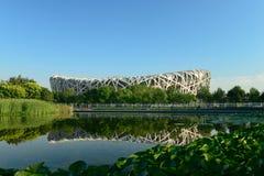 Pekin ptaka Olimpijskiego parka Gniazdowa sceneria Zdjęcie Stock