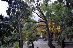 Pekin Xiangshan parka krajobraz fotografia royalty free