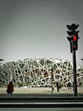 Peking Bird& x27; stadion för s-redemedborgare Royaltyfri Foto