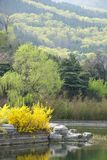 Peking-botanischer Garten Lizenzfreies Stockbild