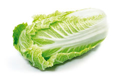 Peking cabbage Royalty Free Stock Photo