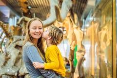 Peking China, am 16. Oktober 2018: Aufpassendes Dinosaurierskelett der Mutter und des Sohns im Museum stockfotos