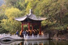 Peking Dafa betet für Weltfrieden Stockbilder