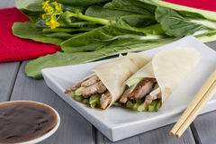 Peking Duck. Chinese peking duck wrapped in pancakes with cucumber, spring onions and hoisin sauce Stock Images