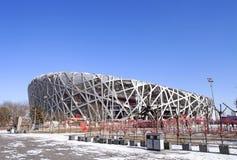 Peking-Nationalstadion Stockfotografie