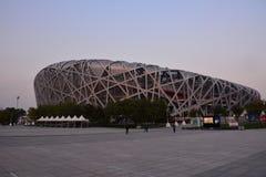Peking-Nationalstadion stockbild