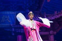 Peking-Oper Schauspieler-akrobatische showBaixi Traum-Nacht Lizenzfreie Stockfotos