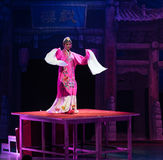 Peking opery Kung Fu showBaixi sen Długa akrobatyczna noc Obraz Stock