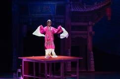Peking opery Kung Fu showBaixi sen Długa akrobatyczna noc Zdjęcia Stock