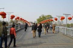 Peking Yu Yuan Tan Park Cherry Blossom Festival 5 Stock Fotografie