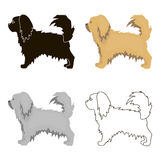 Pekingese vector icon in cartoon style for web. Pekingese vector illustration icon in cartoon design Royalty Free Stock Photography