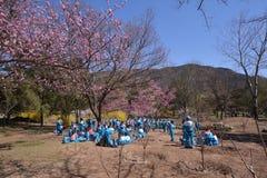Pekinggrundskola för barn mellan 5 och 11 årkoloni Royaltyfri Bild