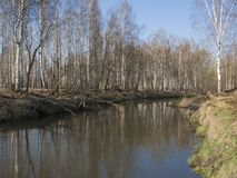 Peksha River In Early Springtime, Russia Stock Photography