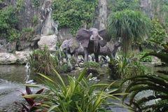 Pelícanos en parque zoológico del ` s de Jakarta Fotografía de archivo