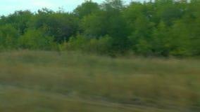 Película da janela de um trem movente Paisagem do outono do russo: campos, florestas, plantando, céu vídeos de arquivo