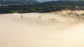 Película del lapso de tiempo de la manta de la niebla gruesa del balanceo sobre el soporte Hood National Forest y Sandy River en  metrajes