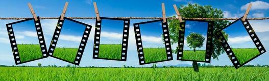 Películas da transparência como o fundo Foto de Stock Royalty Free