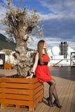 Pela árvore Fotografia de Stock Royalty Free