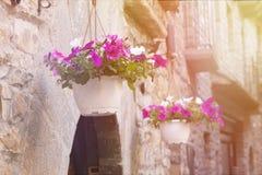 Pela cidade de Ainsa Imagem de Stock