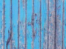 Peladura de la pintura azul brillante en la pared de madera vieja imagenes de archivo