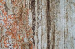 Peladura de la textura 0006 Imagen de archivo