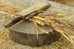 Peladura del trigo Foto de archivo