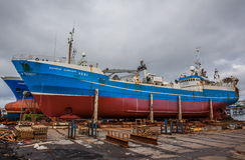 Pelagisk fiskeskyttel i skeppsdocka i Reykjavik. Arkivbild