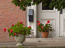 Pelargonien an der Tür Stockfotos