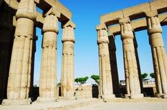 Pelarna p? den Luxor templet, Egypten royaltyfri foto