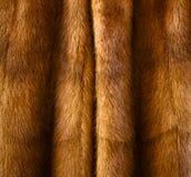 Pele animal imagens de stock royalty free