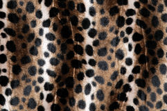 Pele animal (close-up) Imagem de Stock