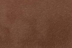 Pele animal da imitação marrom matte da tela Fundo de couro Textura Foto de Stock Royalty Free