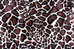 Pele bonita do tigre - textura colorida com alaranjado, o bege, e o b Foto de Stock Royalty Free