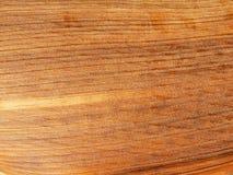Pele da haste em folha de palmeira Fotos de Stock