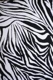 A pele da zebra Foto de Stock