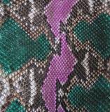 Pele de serpente Imagens de Stock Royalty Free