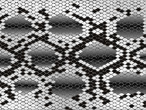 Pele de serpente ilustração stock