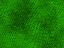 Pele de serpente imagem de stock