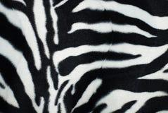 Pele de uma zebra imagens de stock