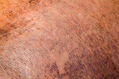 A pele do hipopótamo é grossa, fotografia de stock