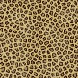 Pele do jaguar Imagens de Stock